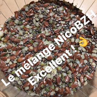 Oméga 3 BIO: chia, lin et chanvre en 250 g 00434