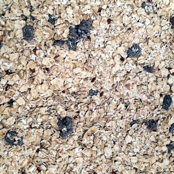 Muesli classique aux flocons d'avoine - 1 kg 00435