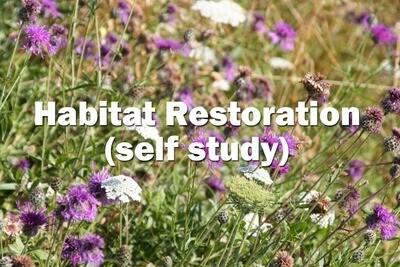 Habitat Restoration- Self Study Course