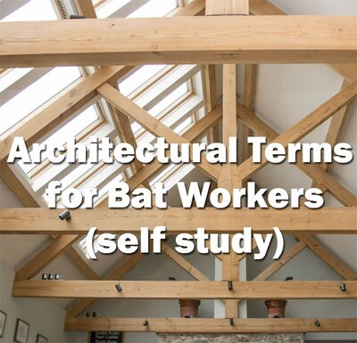 Bats: Architectural Terms for Bat Workers - Self Study Course
