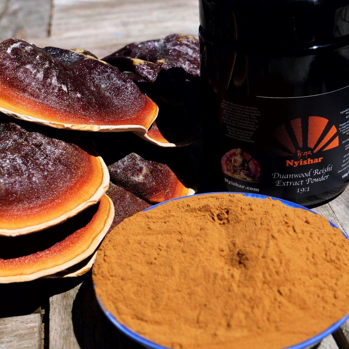 Duanwood Reishi Dual-Extract Powder 19:1 0001