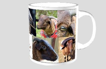 Coffee mug - David the sheep 00009