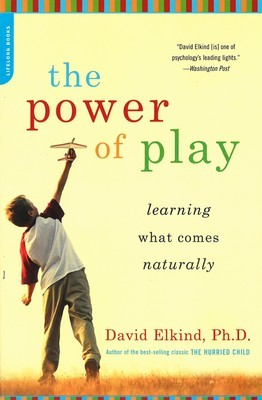 Power of Play, The: Learning What Comes Naturally