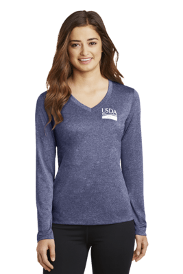 Ladies Long Sleeve V-Neck Tee