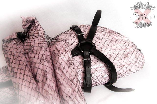 Cerdos y Rosas: Jamón Ibérico de Bellota