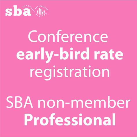 Professional non-member Conference Registration