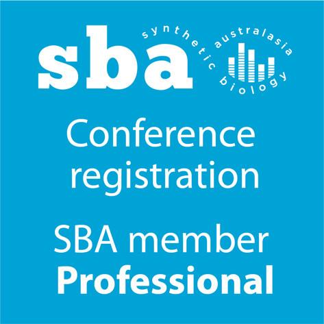 Regular Professional member Conference Registration