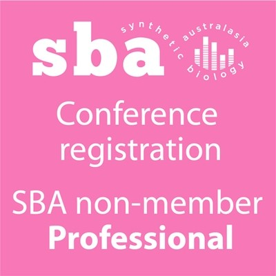 Regular Professional non-member Conference Registration