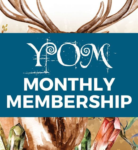 MONTHLY SUBSCRIPTION - Year of ME Planner and Membership 2019 91919