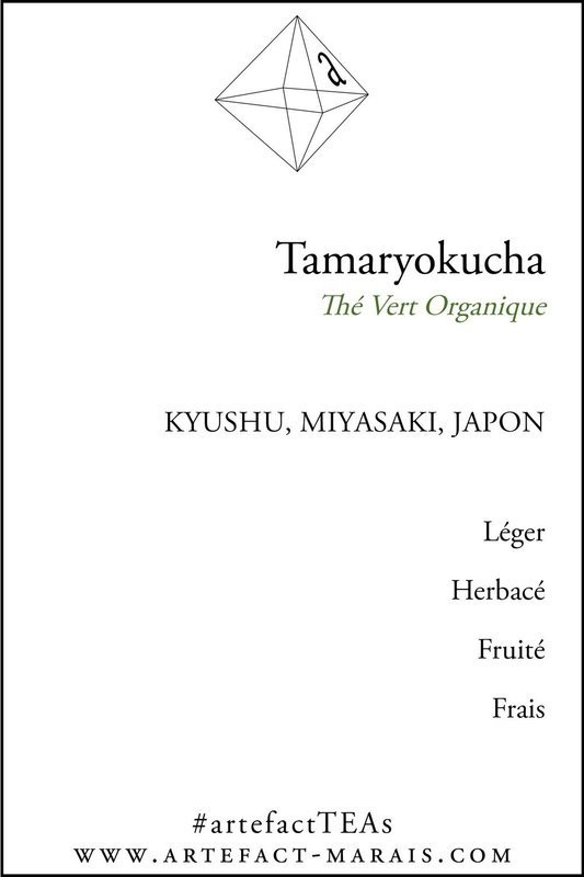 Tamaryokucha : Thé vert organique