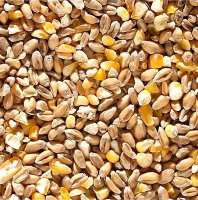 Poultry Corn - mixed per 20k kg.