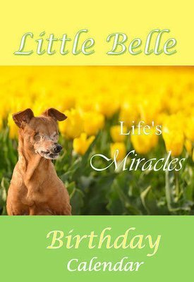 Little Belle Birthday Calendar 'Life's Miracles'