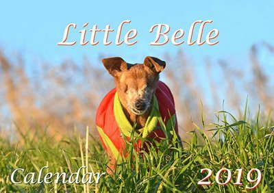 Little Belle Calendar 2019