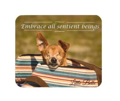 Little Belle Mouse Pad 'Embrace all sentient beings'