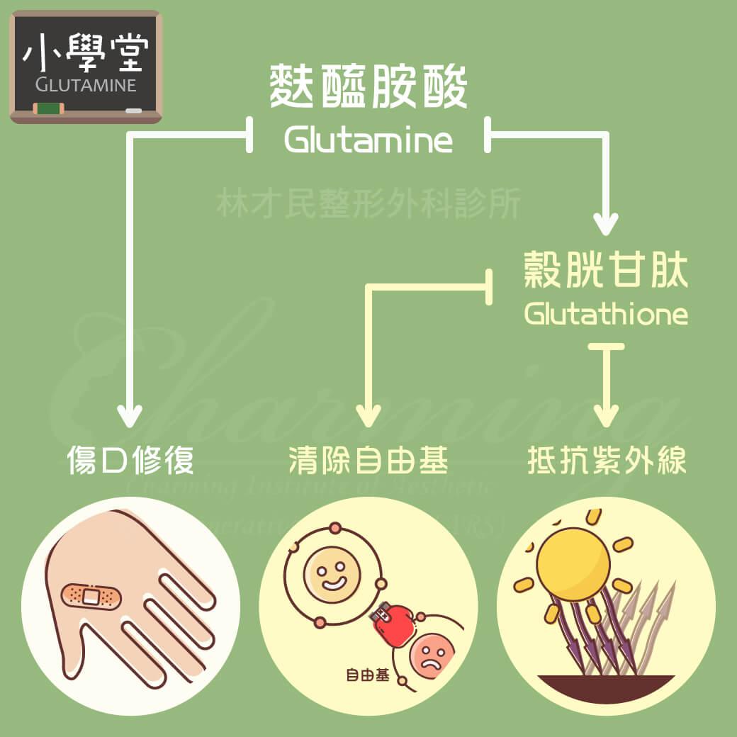 【小學堂】醫學知識-麩醯胺酸 Glutamine | 林才民整形外科診所CIARS