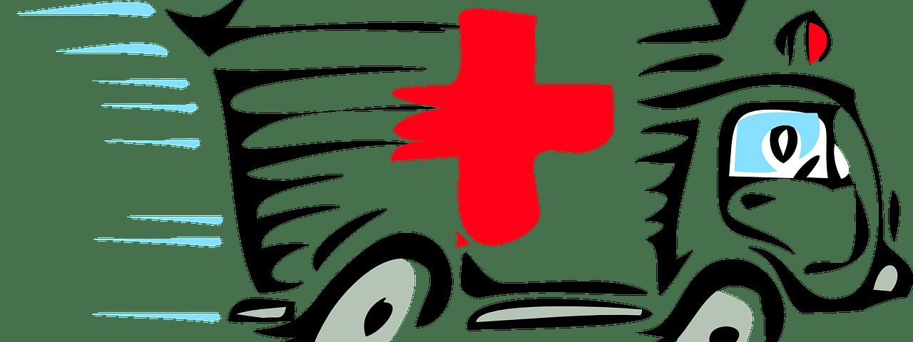 Der Rettungsdienst — Einführung