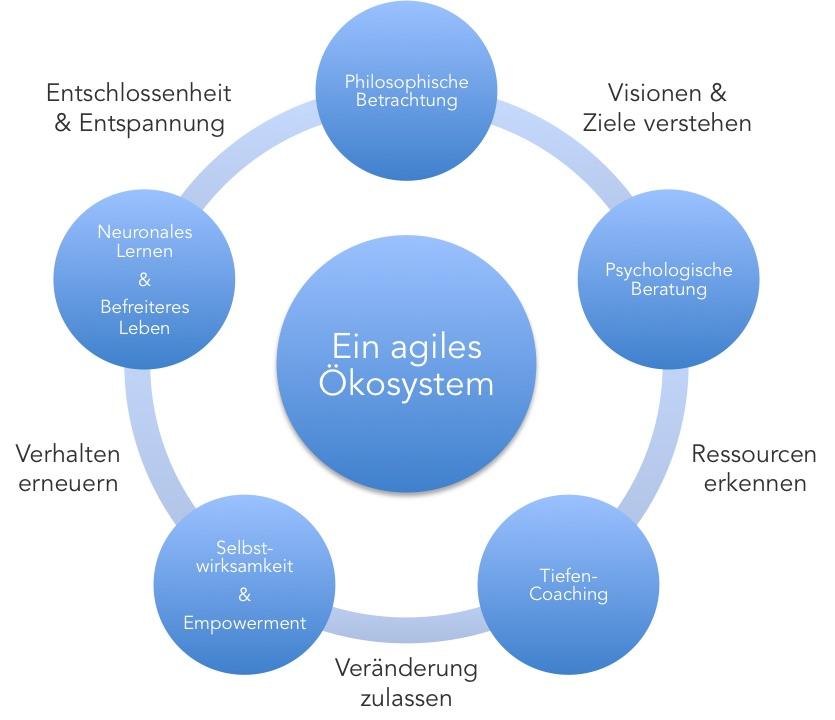 Agil Coaching Empowerment Philosophie Beratung