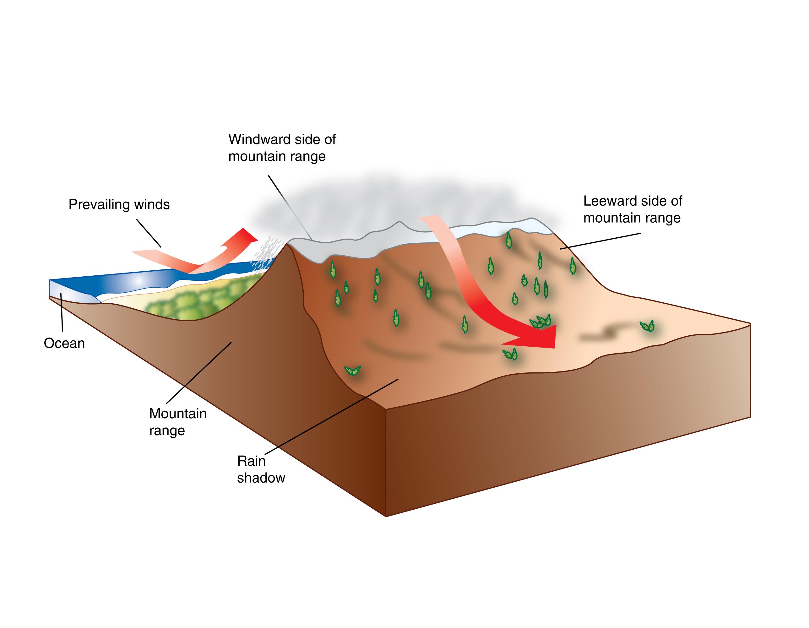 frontal rainfall diagram kenworth t660 wiring diagrams biomes ck 12 foundation