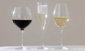 Wine tasting glass shape