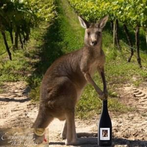kangaroo and two hands