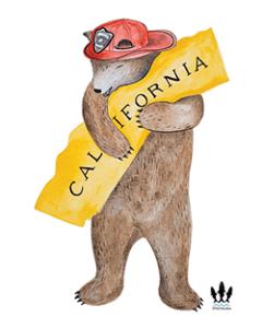 calfire bear