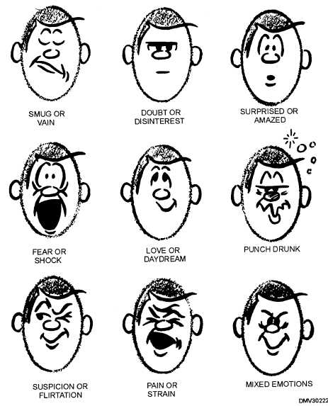 Cartoon Facial Features