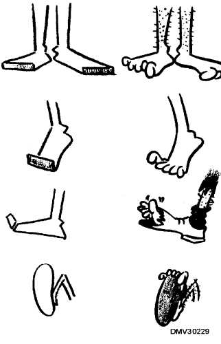 Figure 4-28.Humorous cartoon feet.