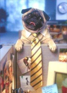 Goodbye Card Featuring a Pug