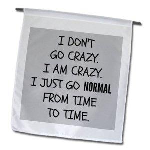 I Don't Go Crazy I Go Normal