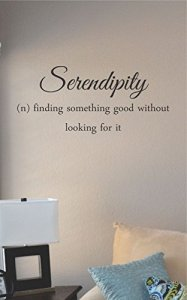 Serendipity Wall Quote