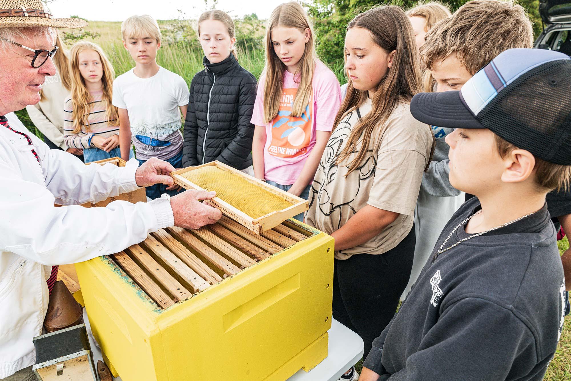 Victor Rasmussen fra Amager Biavlerforening viser eleverne en bitavle. Foto: TorbenStender.