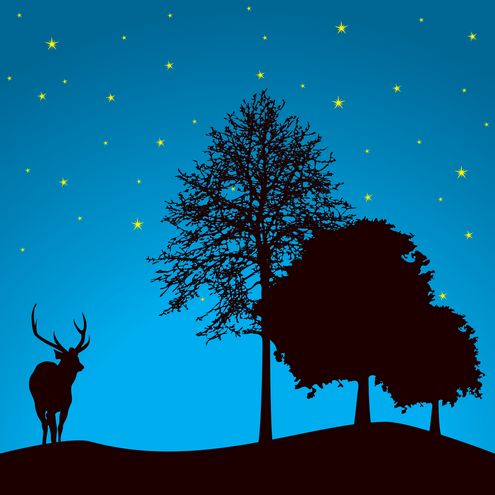 _Vector - Trees Night Preview by DragonArt