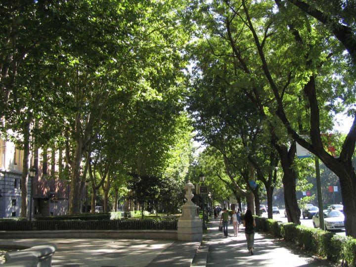 Paseo del Prado Madrid con niños, dragones y unicornios
