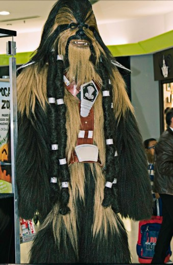 Wookie Madrid con niños, dragones y unicornios