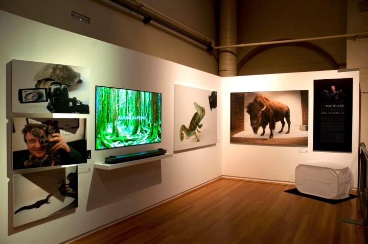 Foto de la exposición.
