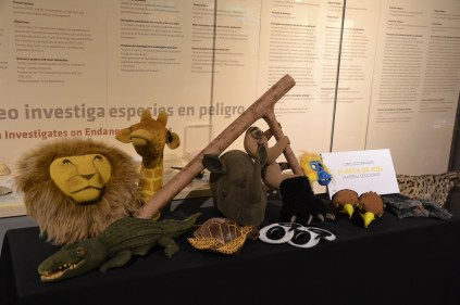 Imagen del recorrido de la visita por la exposición.