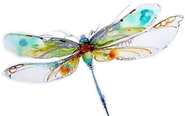 Dragonfly- tiny