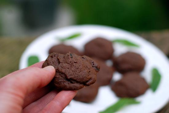 chocolate mint cookies 8