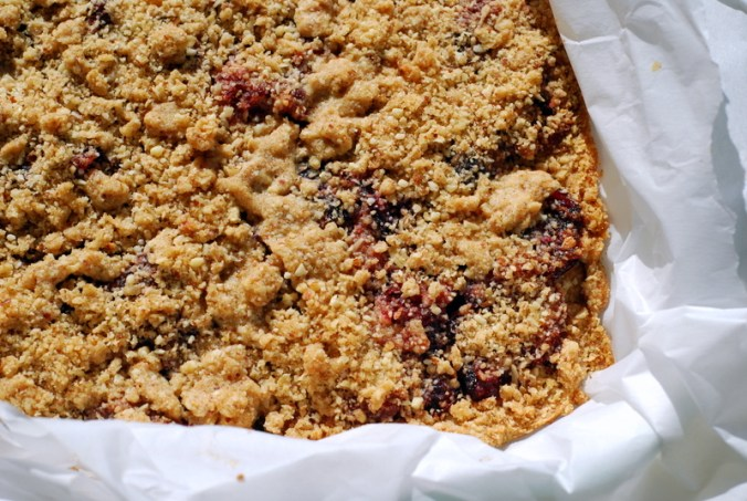 cranberry bars, uncut
