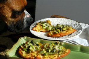 asparagus and potato naan with dog
