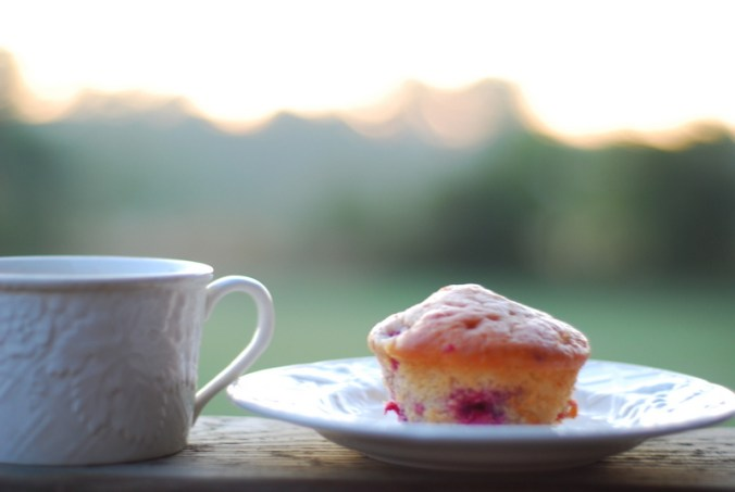 raspberry muffin and sunrise