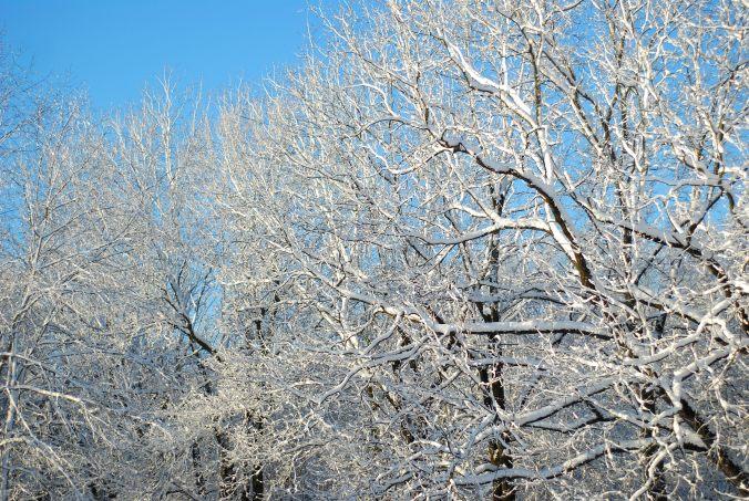 snow and blue sky