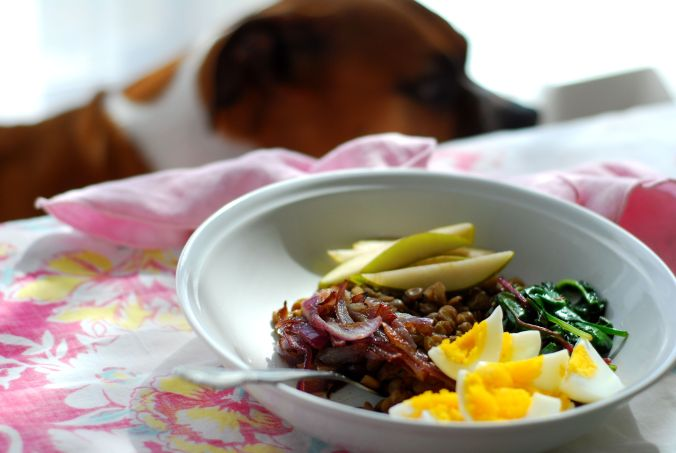 green lentil power bowl with dog
