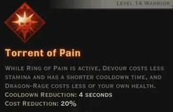 Torrent of Pain