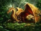 Dragon & Knight