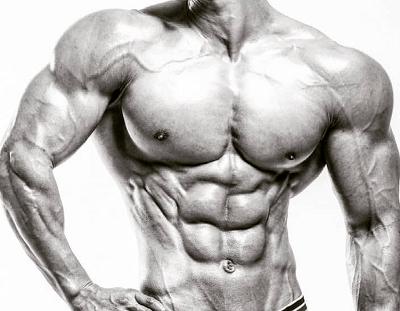 Halotestin-muscles