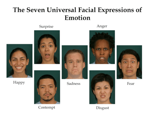 Seven Universal Facial Expressions of Emotion