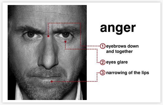 Photos: Dr. Cal Lightman's Seven Universal Micro-Expressions (1/6)