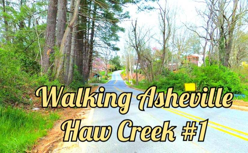 Walking Asheville – Haw Creek 1
