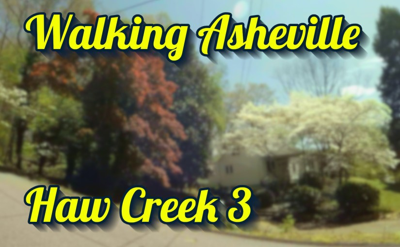 Walking Asheville – Haw Creek 3
